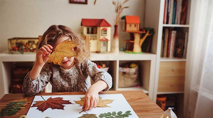 child works on leaf identification project in craft room for homework assignment