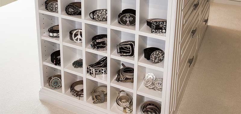 Closet cubby organizer for belts