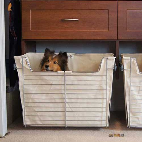 your pet closet can be for more than storage