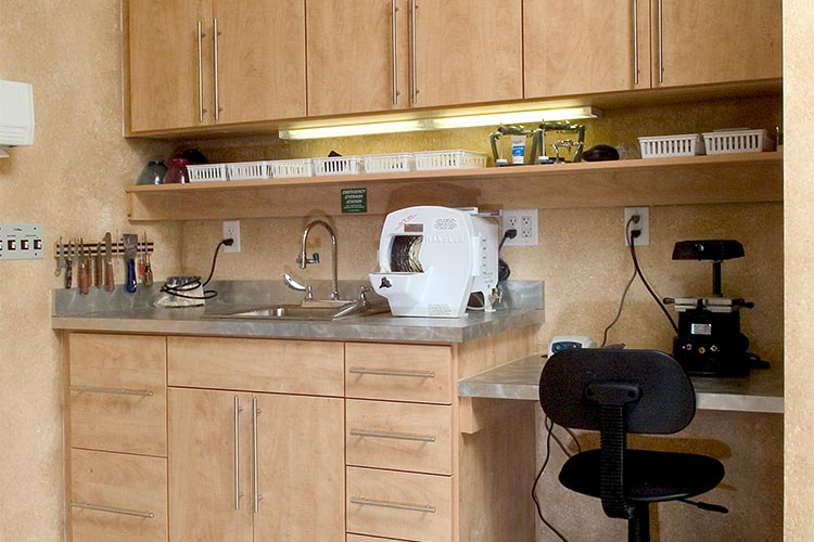 Professional laboratory work station and cabinetry with sink and storage