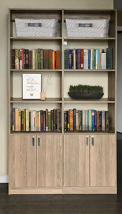 bookshelves in a home office