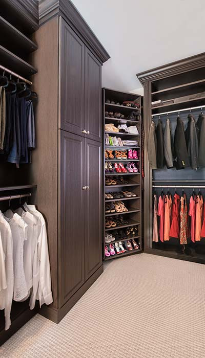walk in closet with harmony doors