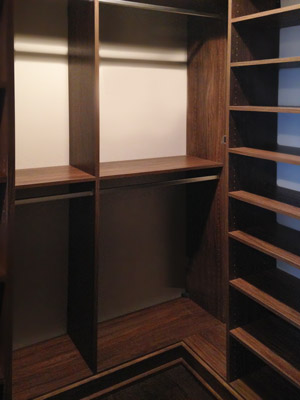 walk-in closet with elevated platform