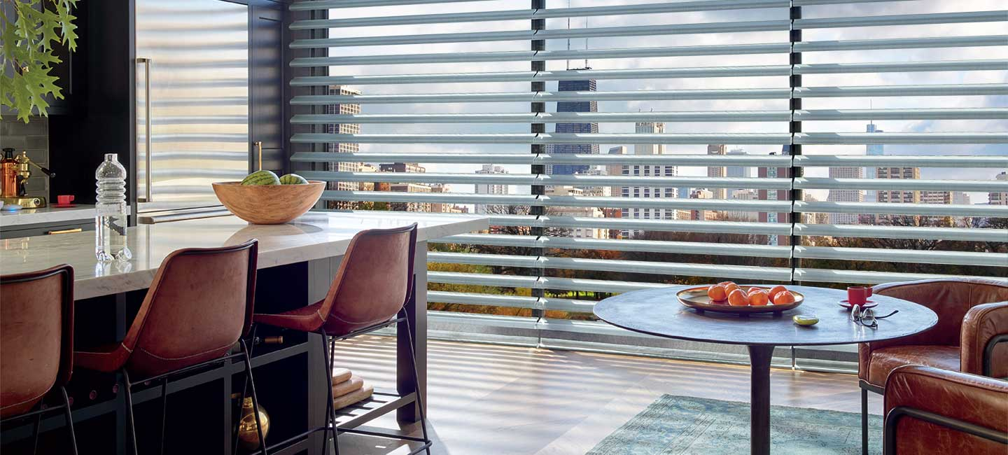 Hunter Douglas Pirouette Clearview window shadings and sheers