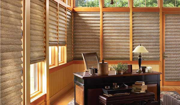 get $100 rebate when you buy 2 Vignette roman shades