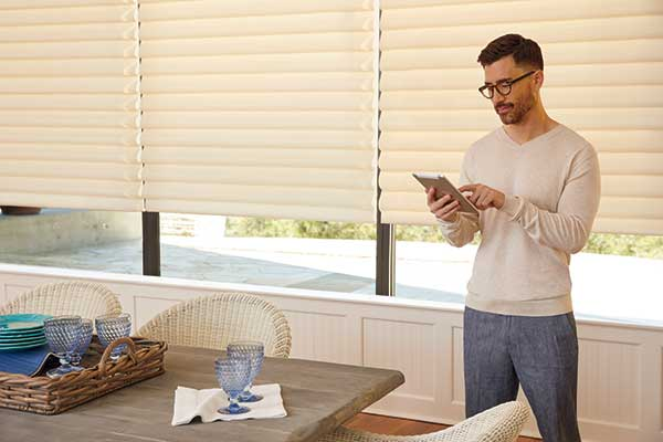 get $150 rebate when you buy 4 Vignette Modern Roman Shades with Powerview Motorization