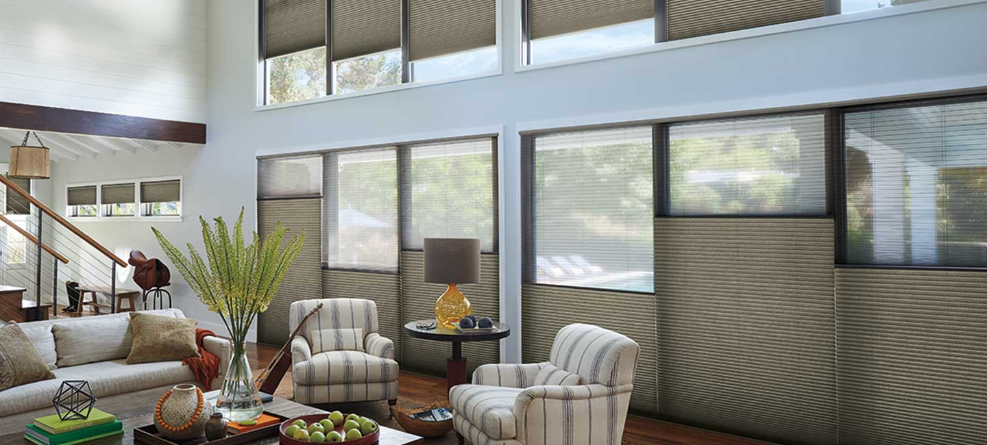 Duette Arcitella Cellular Honeycomb Shades from Hunter Douglas