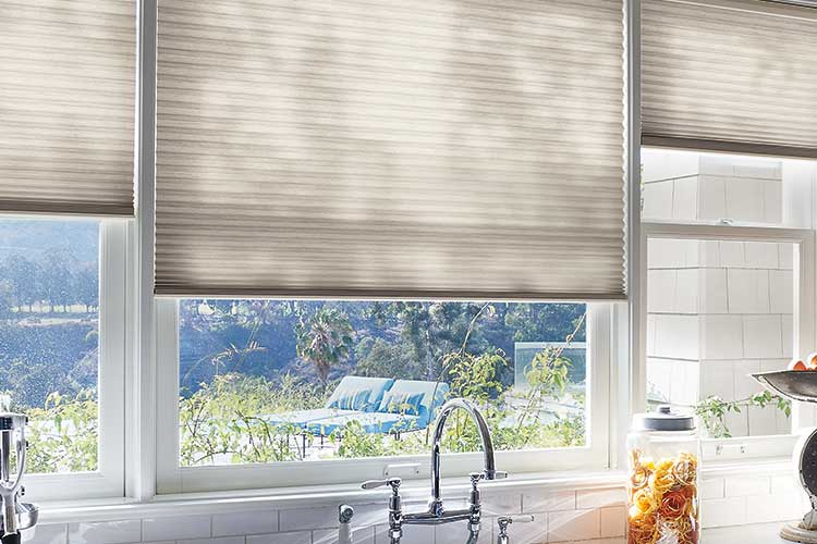 Window cellular honeycomb and pleated shades from Hunter Douglas