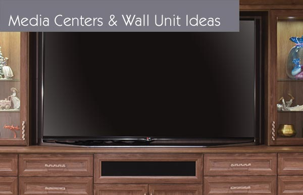 Media Center closets, closet organizations systems and closet organizer ideas